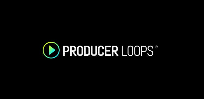 Producer loops music production samples loops hits sampling