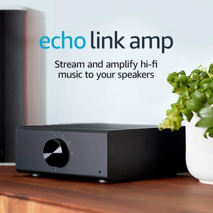Echo Link Amp