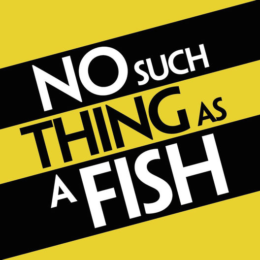 4. No Such Thing As A Fish